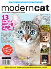 Scholastic Art Magazine