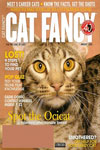 Catster (Formerly Cat Fancy) Magazine Subscription