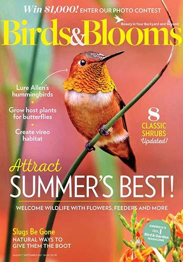 Birds Amp Blooms Magazine Subscription Magazinedeals Com